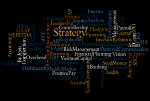 CFO Role wordle