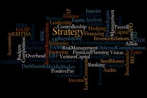 CFO Role wordle